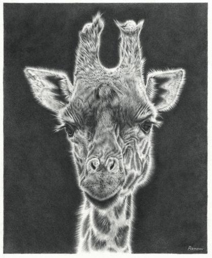 Giraffe drawing 2_Fotor_Fotor